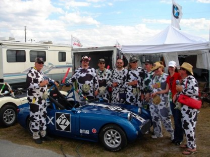 We Learn the Udder Truth About the Sebring Cows