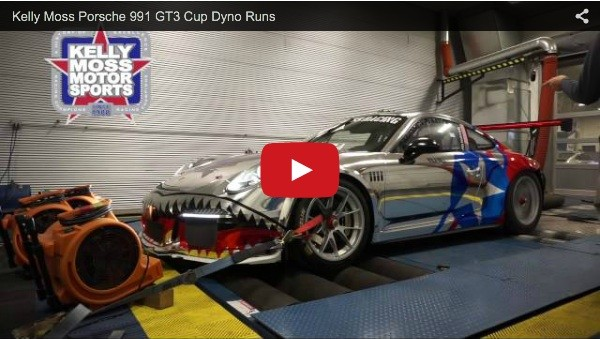 Kelly Moss Chrome Shark Livery on Dyno