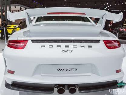 rear wing of the 2014 Porsche 911 GT3