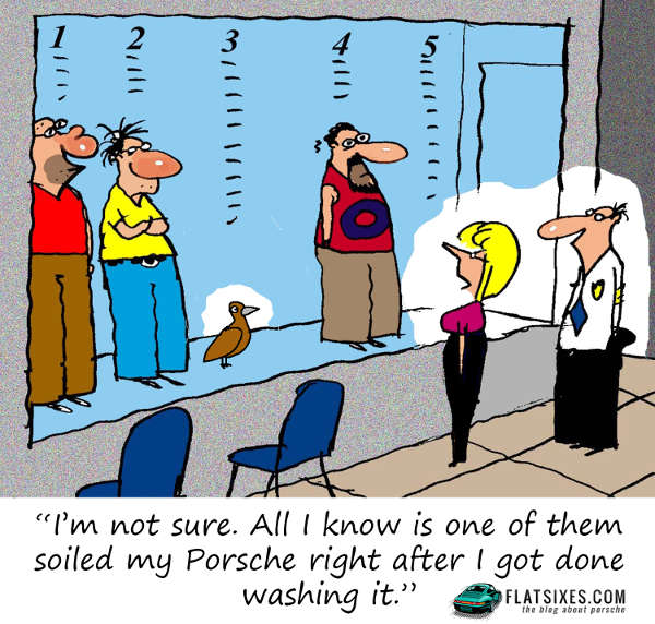 Bird pooping on Porsche Cartoon